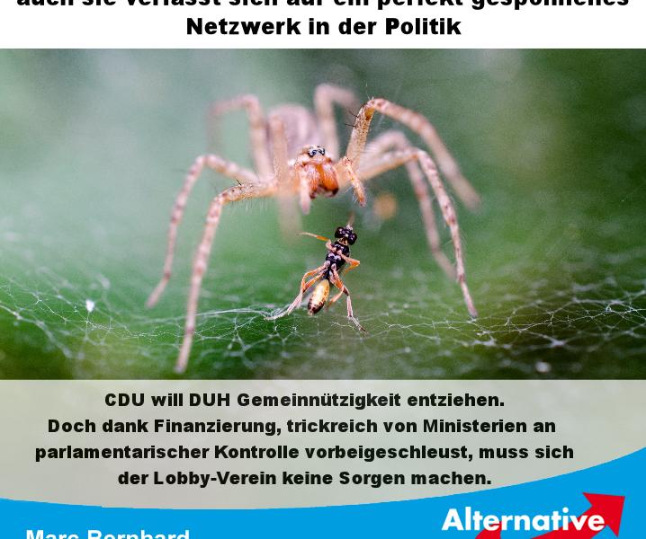 Die CDU wird an dem Vorhaben, der deutschen Umwelthilfe die Gemeinnützigkeit zu entziehen, kläglich scheitern.