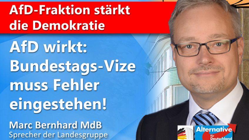 Bundestagsvize